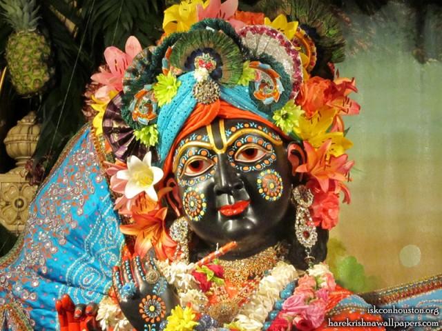 Sri Nilamadhava Close up Wallpaper (004)