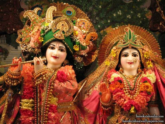 Sri Sri Rukmini Dwarkadhish Close up Wallpaper (004)