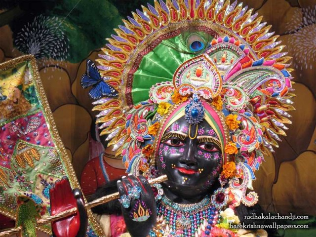 Sri Kalachanda Close up Wallpaper (005)
