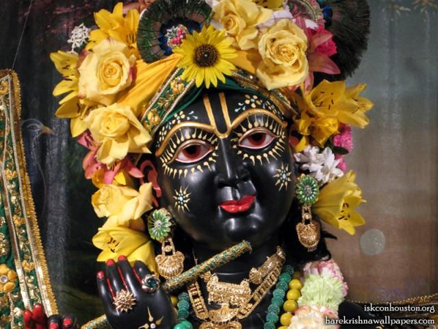 Sri Nilamadhava Close up Wallpaper (006)