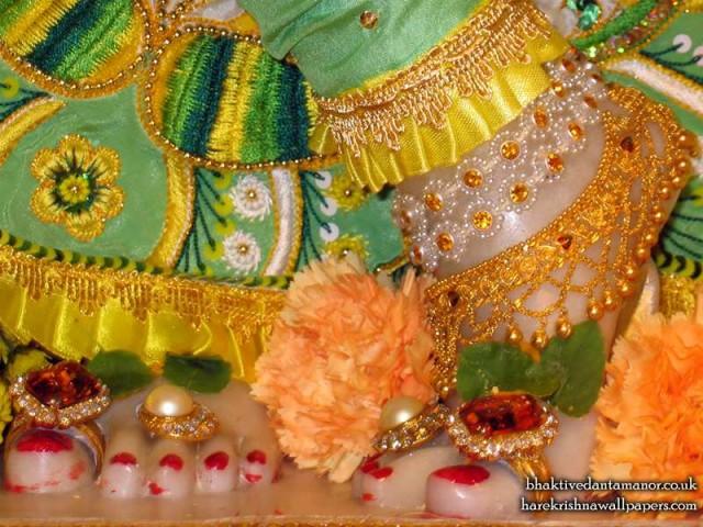Sri Gokulananda Feet Wallpaper (007)