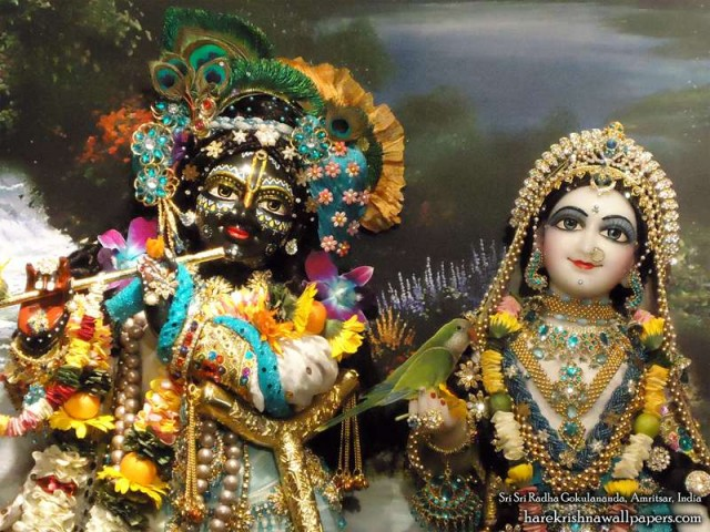 Sri Sri Radha Gokulananda Close up Wallpaper (007)