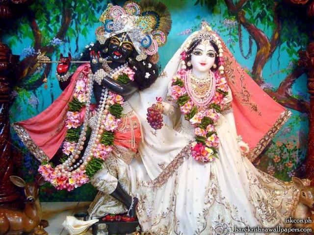 Sri Sri Radha Madhava Wallpaper (008)