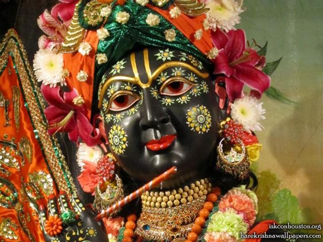 Sri Nilamadhava Close up Wallpaper (009)