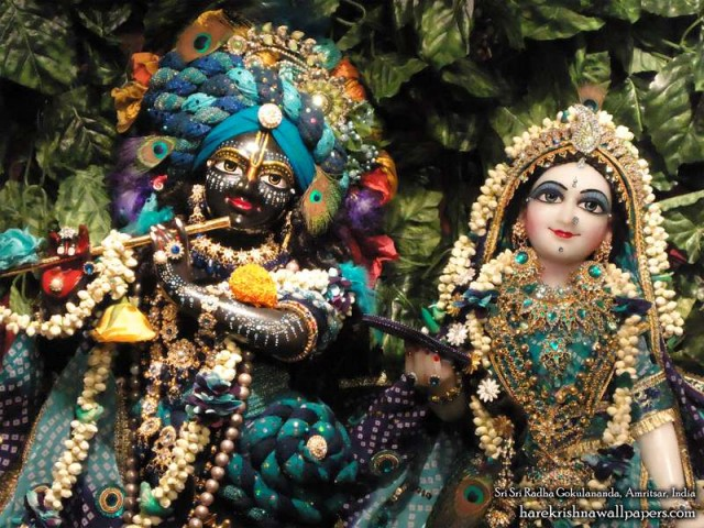 Sri Sri Radha Gokulananda Close up Wallpaper (010)