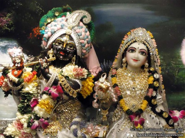 Sri Sri Radha Gokulananda Close up Wallpaper (011)