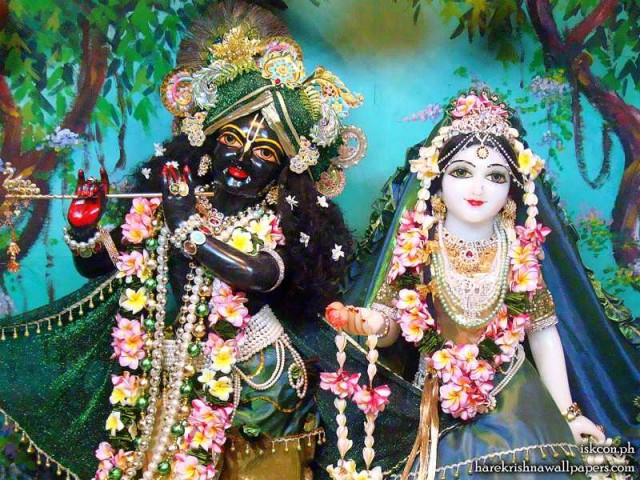 Sri Sri Radha Madhava Close up Wallpaper (012)