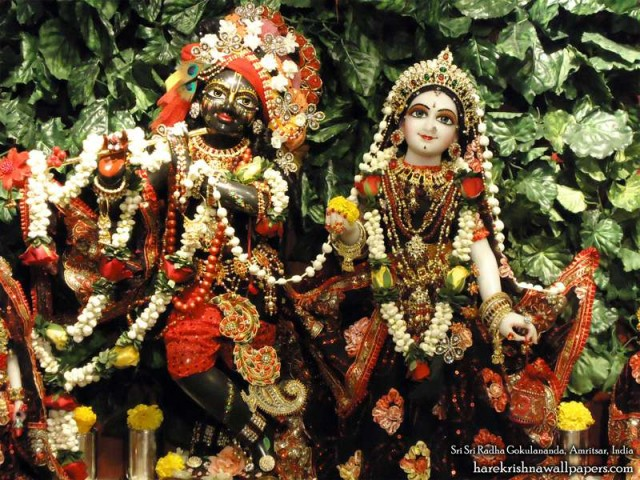 Sri Sri Radha Gokulananda Wallpaper (014)