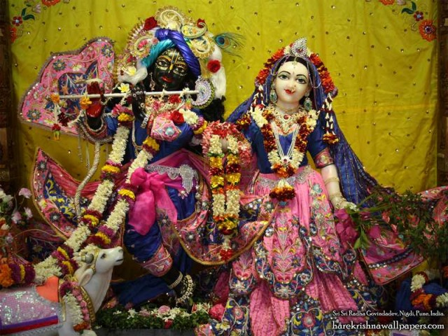 Sri Sri Radha Govind Wallpaper (018)