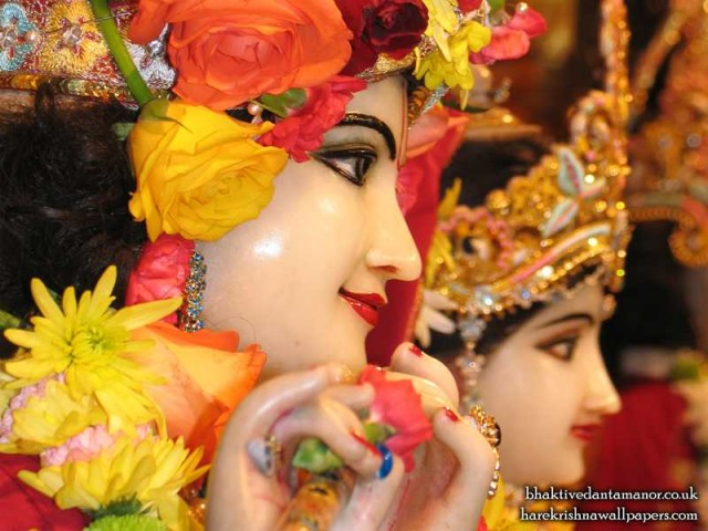 Sri Sri Radha Gokulanand Close up Wallpaper (019)