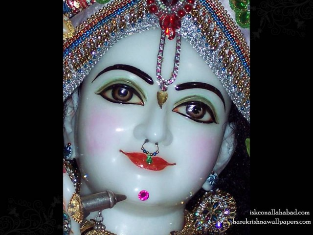 Sri Venimadhava Close up Wallpaper (001)
