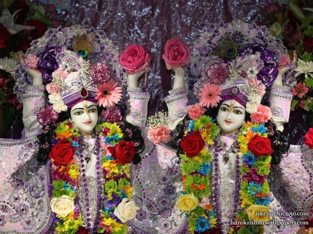 Sri Sri Gaura Nitai Close up Wallpaper (002)