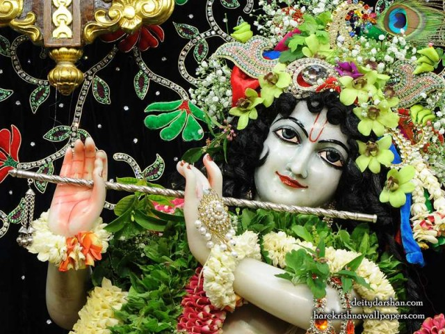 Sri Gopinath Close up Wallpaper (156)