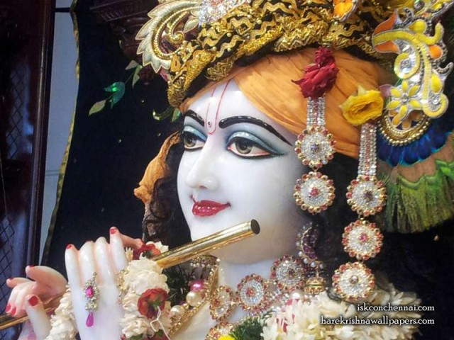 Sri Krishna Close up Wallpaper (008)