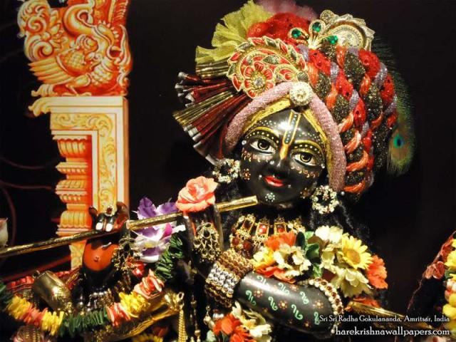 Sri Gokulananda Close up Wallpaper (011)
