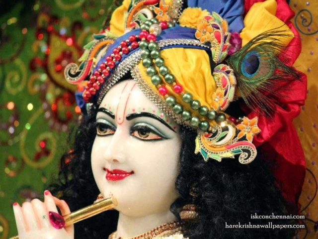 Sri Krishna Close up Wallpaper (011)