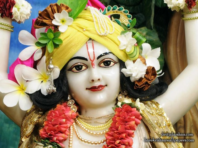 Sri Nitai Close up Wallpaper (013)