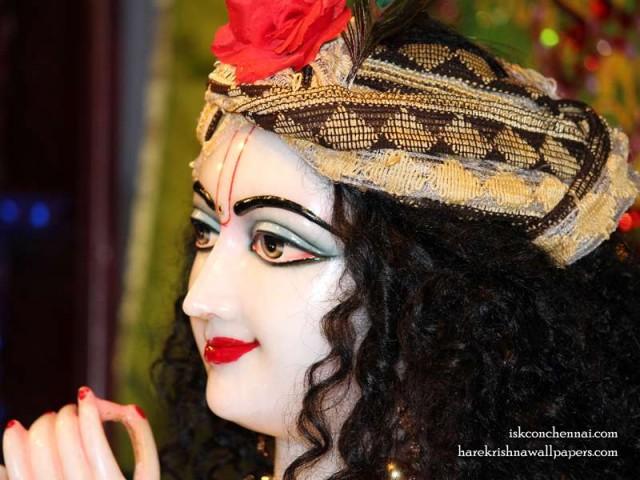 Sri Krishna Close up Wallpaper (016)