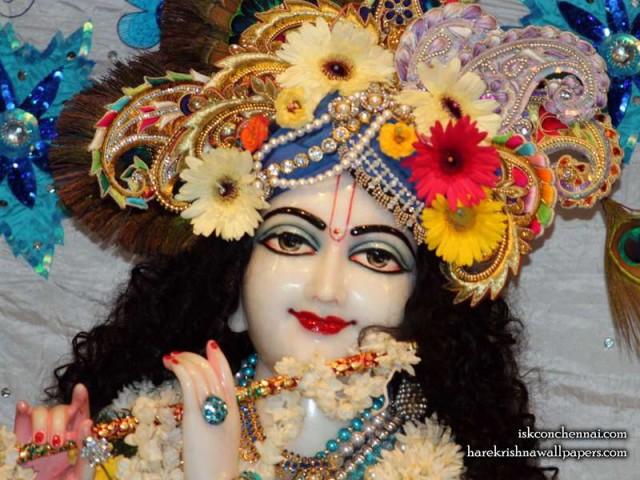 Sri Krishna Close up Wallpaper (017)
