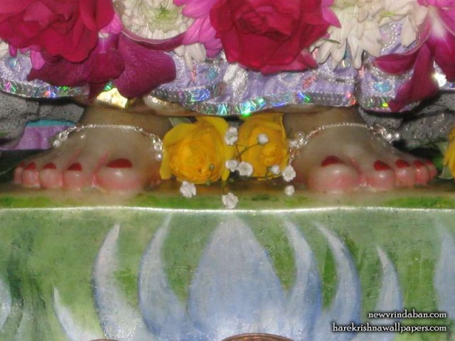 Sri Radha Feet Wallpaper (001)