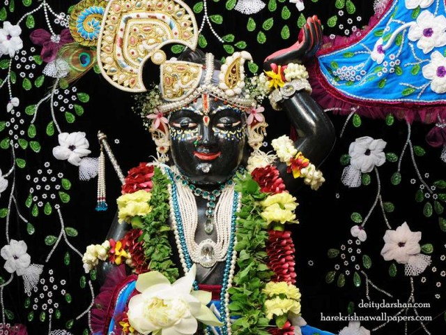 Sri Gopal Close up Wallpaper (021)
