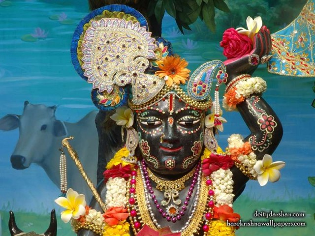 Sri Gopal Close up Wallpaper (025)