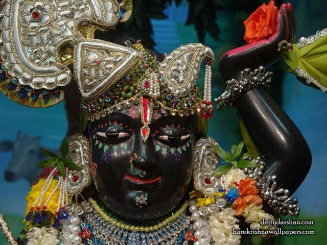 Sri Gopal Close up Wallpaper (026)