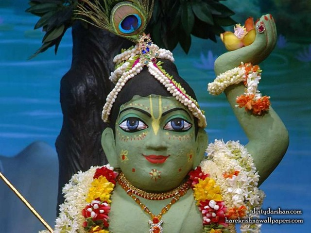 Sri Gopal Close up Wallpaper (027)