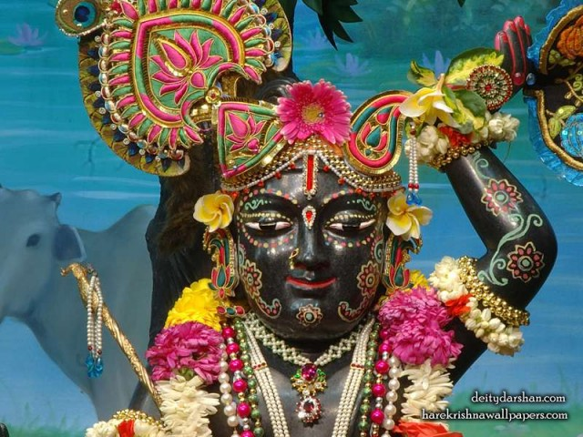 Sri Gopal Close up Wallpaper (028)