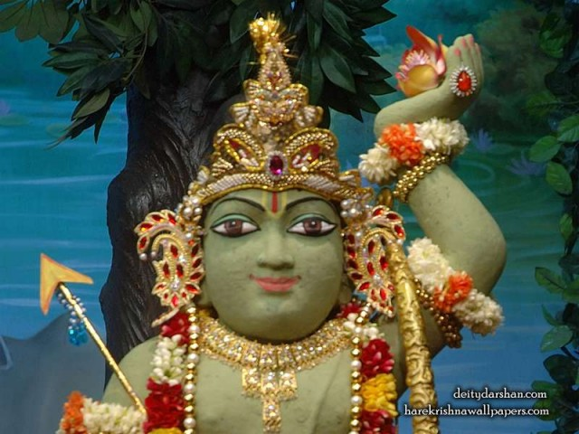 Sri Gopal Close up Wallpaper (029)