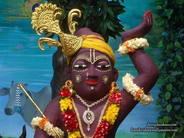 Sri Gopal Close up Wallpaper (031)