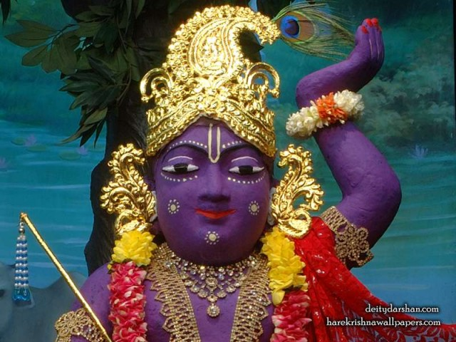Sri Gopal Close up Wallpaper (032)