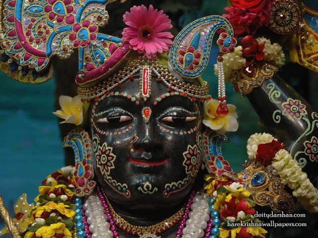 Sri Gopal Close up Wallpaper (033)