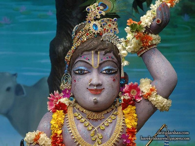 Sri Gopal Close up Wallpaper (041)