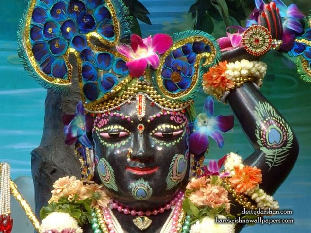 Sri Gopal Close up Wallpaper (051)