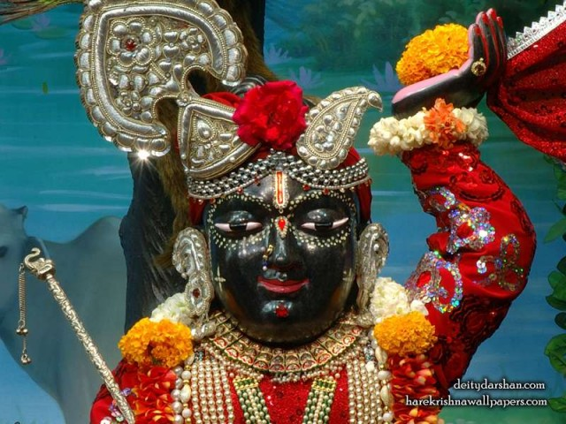 Sri Gopal Close up Wallpaper (053)
