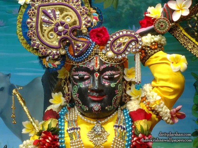 Sri Gopal Close up Wallpaper (055)