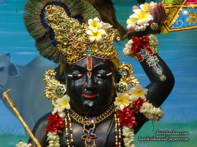 Sri Gopal Close up Wallpaper (056)