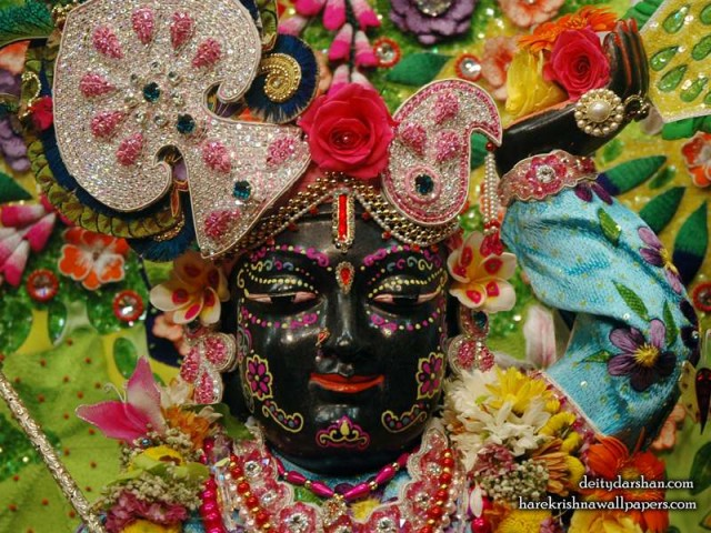 Sri Gopal Close up Wallpaper (058)
