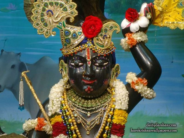 Sri Gopal Close up Wallpaper (060)