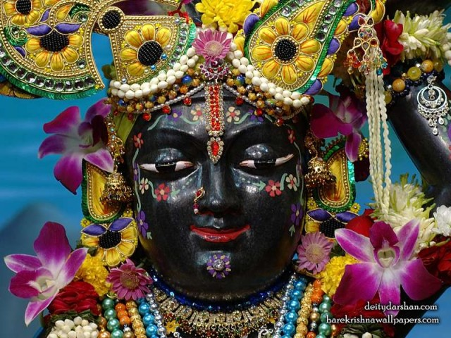Sri Gopal Close up Wallpaper (061)