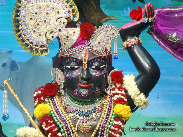 Sri Gopal Close up Wallpaper (065)