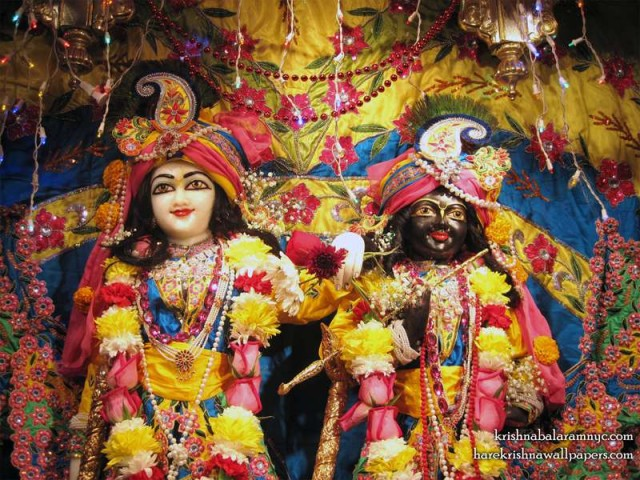 Sri Sri Hari Haladhari Close up Wallpaper (001)