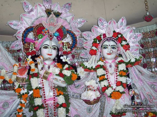 Sri Sri Radha Venimadhava Close up Wallpaper (002)