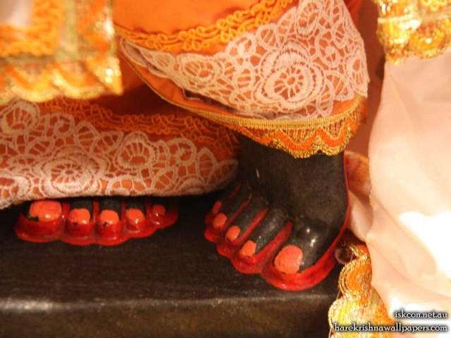 Sri Vallabh Feet Wallpaper (004)