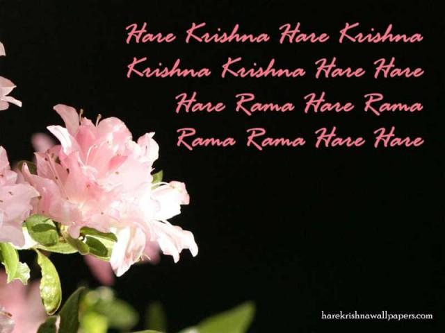 Chant Hare Krishna Mahamantra Wallpaper (012)