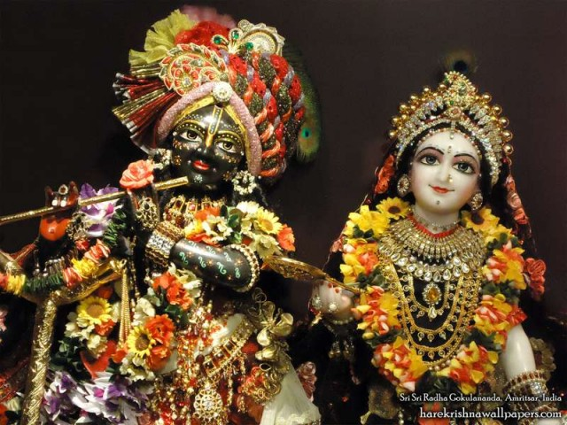 Sri Sri Radha Gokulananda Close up Wallpaper (017)