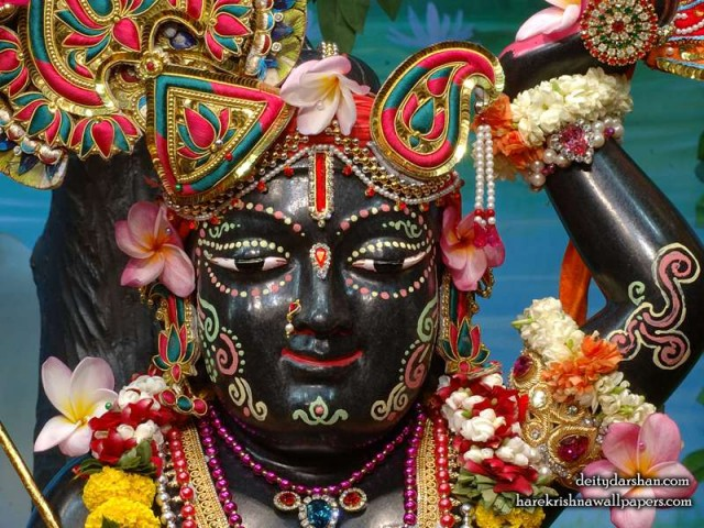 Sri Gopal Close up Wallpaper (035)