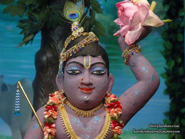 Sri Gopal Close up Wallpaper (040)