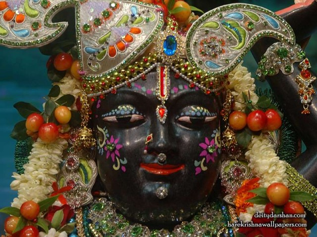 Sri Gopal Close up Wallpaper (044)